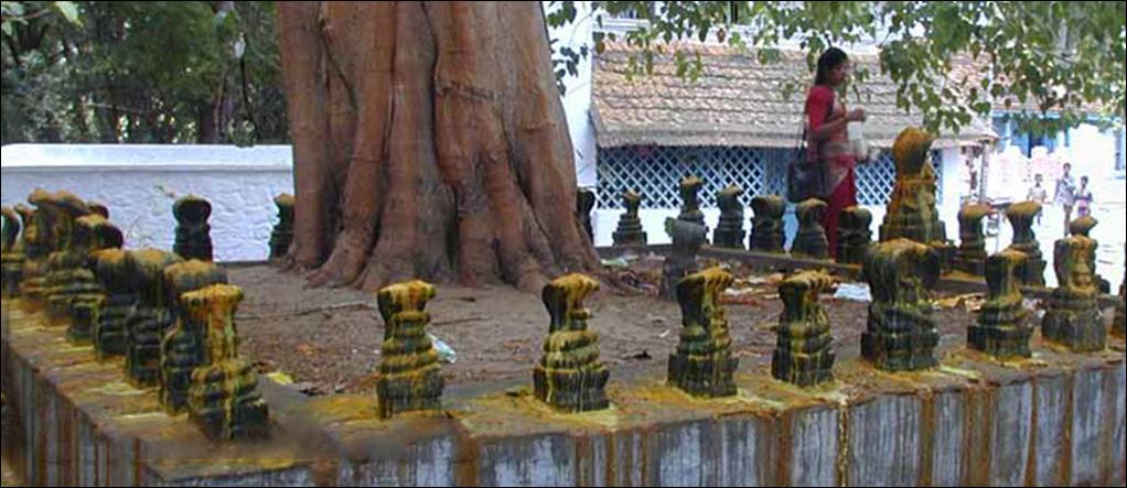Nagraja Temple